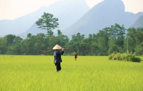 Вьетнам - Климат