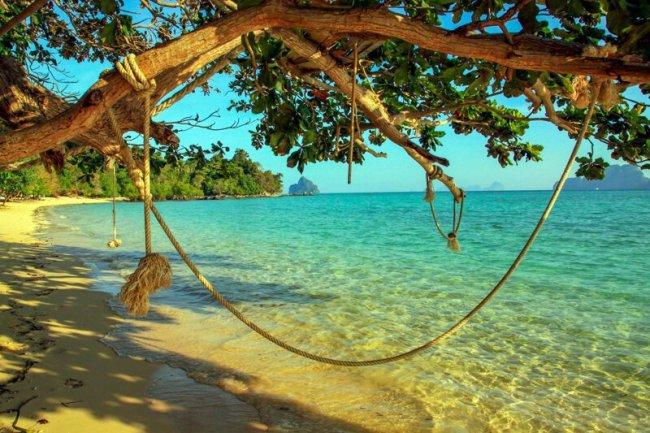 5 классных пляжей, где вас непременно съедят... либо уничтожат(6фото)